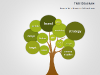 Cause and Effect Tree Diagrams For PowerPoint - slide5