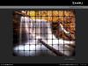mosaic-photo-effect-thumb07